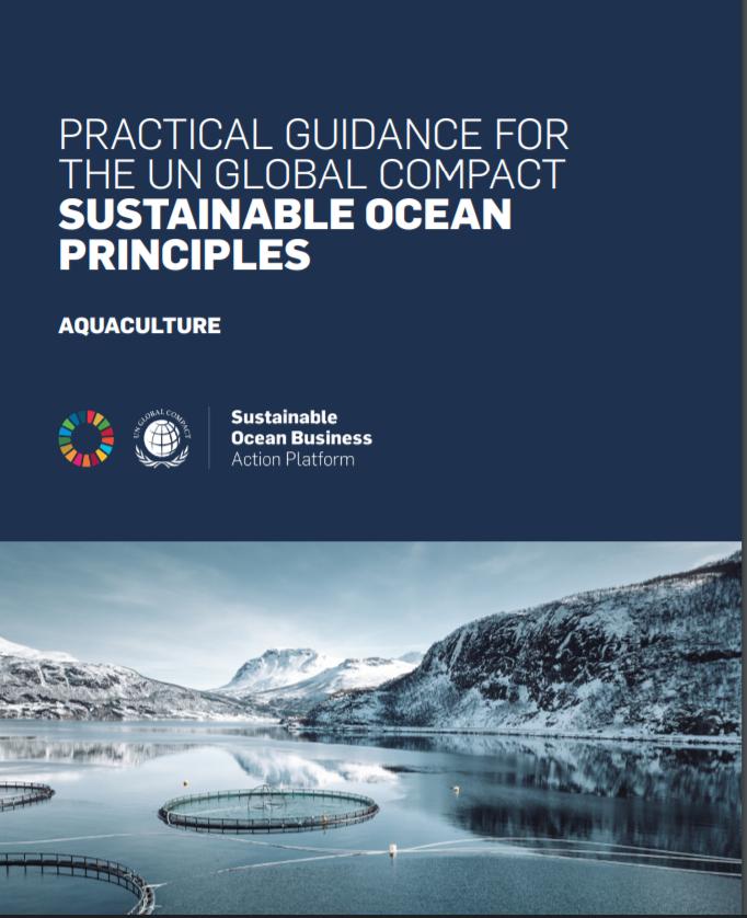 Scaling SDG Finance